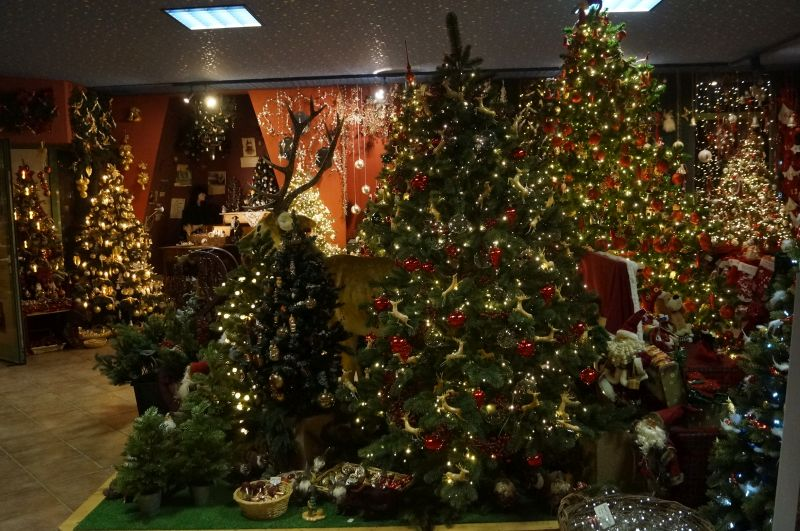 Wnętrze sklepu Der Christbaum