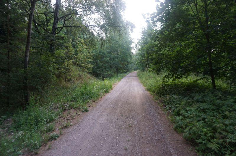 W lesie za Botkunami, tam gdzie kiedyś jeździły pociągi teraz wiedzie wygodna trasa rowerowa