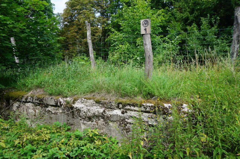 Fragment dawnej rampy kolejowej nastacji Golubie