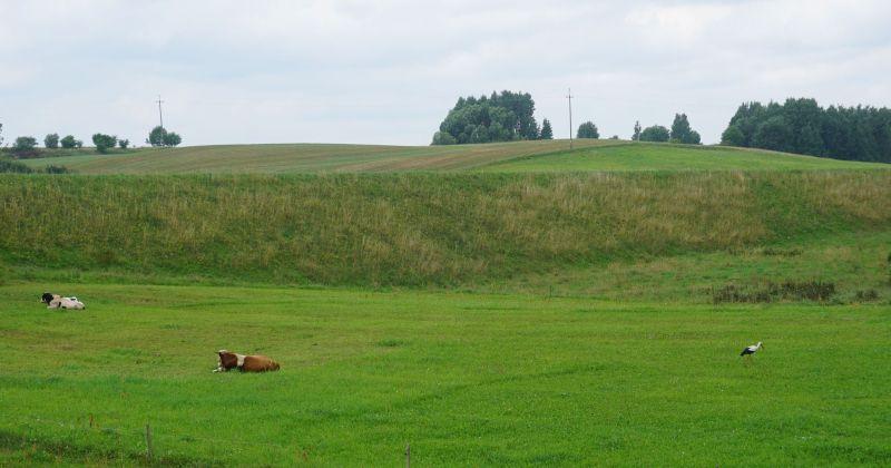Dawniej nasyp kolejowy, obecnie pastwiska...
