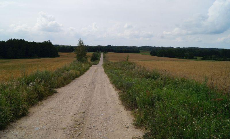 Trasa prowadzi wygodną szutrową drogą...