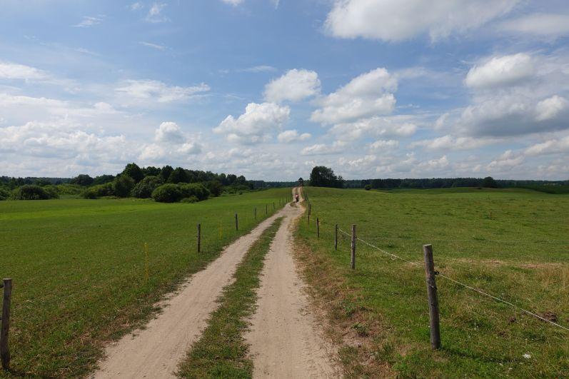 Mazurskie szutry - takwygląda trasa rowerowa wzdłuż Krutyni