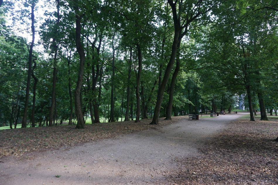 Parka nadawnym wzgórzu Jäenike wMrągowie
